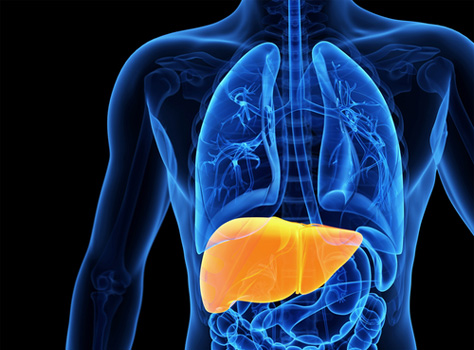 Fatty Liver: The Silent Killer