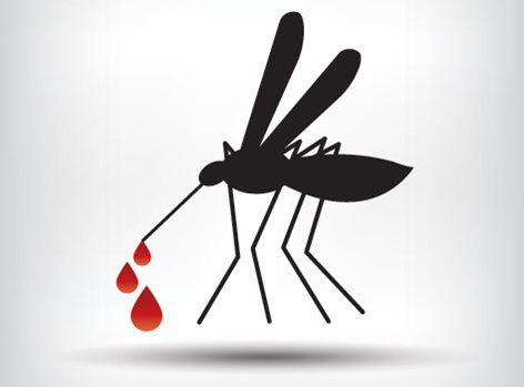 Dengue hemorrhagic fever in children